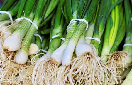 Bunch of fresh spring onion at the marketplace