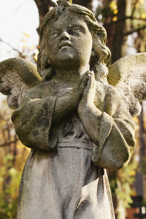 praying angel: Figure of a praying angel in the cemetery