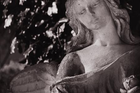cara triste: La imagen del vintage de un ángel triste en un cementerio en el contexto de las hojas (detalles)