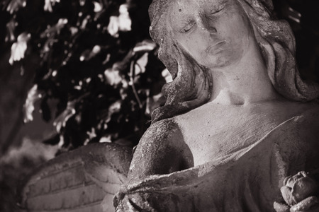 sad face: Vintage image of a sad angel on a cemetery against the background of leaves (details)