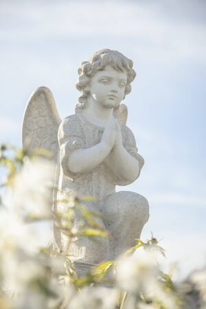 Little angel in flowers as symbol of guards for children. Love, faith, hope, religion, Christianity, good concept. Archivio Fotografico