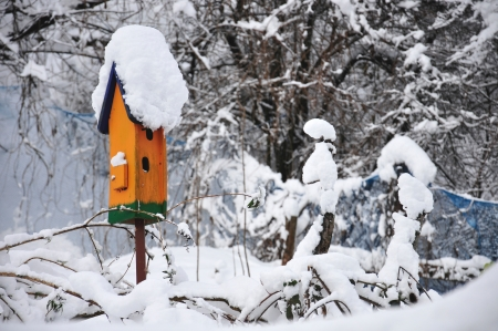 orange birdhouse covered with snow photo