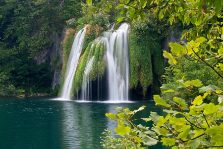 silky waterfall surrounded by forest