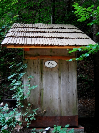 streifzug: Holz WC Haus im Wald Lizenzfreie Bilder