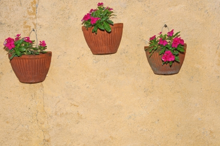 flowerpots with pink flowers hanging on a house wall photo