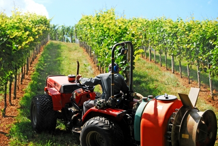 irrigation field: a farmer watering the vineyards with a tractor Stock Photo