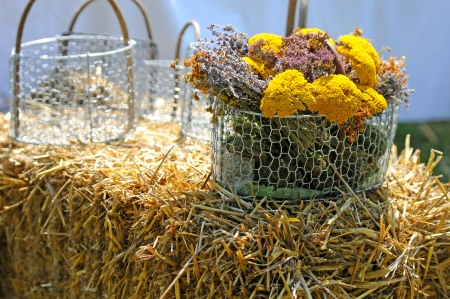 wolly: a bouquet of yarrows in a metal basket on a straw bale