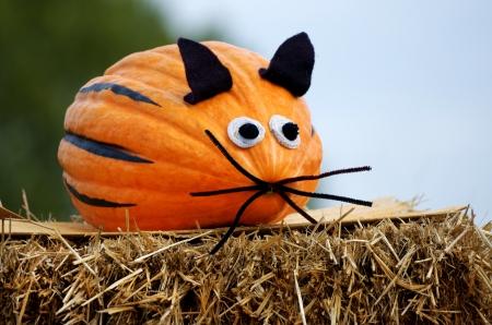 calabazas de halloween: calabaza ratón en una bala de paja