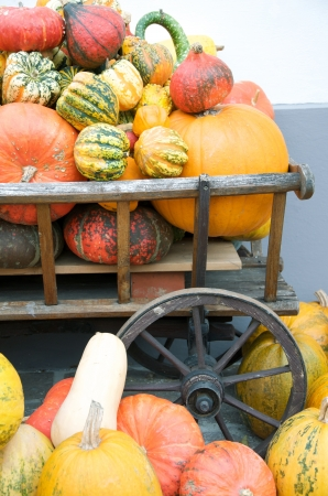 many different pumpkins in a wooden hay cart photo