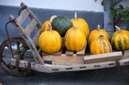 pushcart: pumpkins in a wooden pushcart Stock Photo