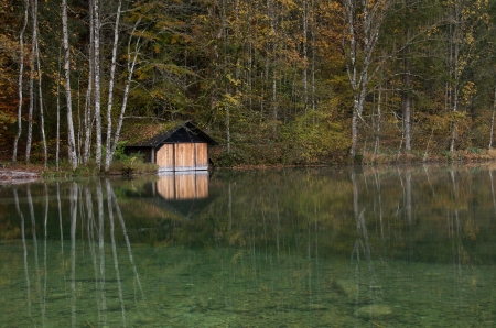 wooden hut: wooden hut and birches mirroring in the forest lake Stock Photo