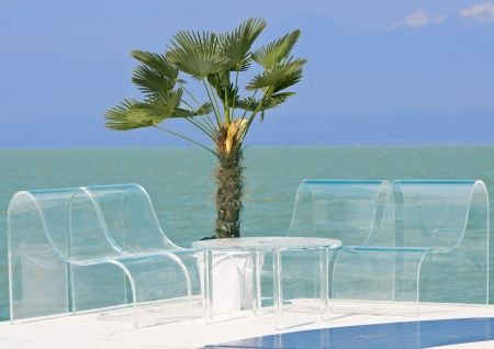 exclusive seating area with palm tree on the beach