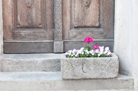 potted pink flowers on a step in front of a wooden house door photo