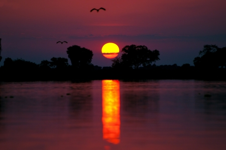 sunset on the lake manze in tanzania - national park selous game reserve photo