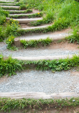 wooden steps - hiking path in the mountains photo