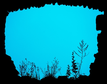 backlighting: created floral frame cyan Stock Photo