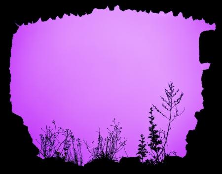backlighting: created floral frame magenta
