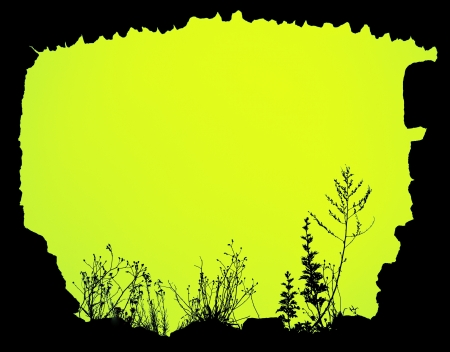 backlighting: created floral frame yellow
