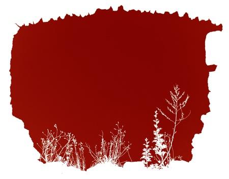 backlighting: created floral frame red