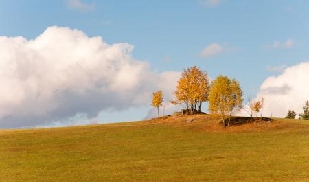 lonesomeness: rural landscape in autumn in Austria