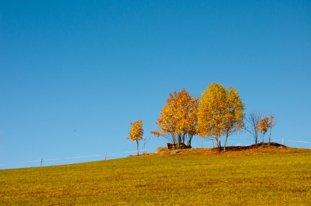 reclusion: hill land with deciduous trees in autumn