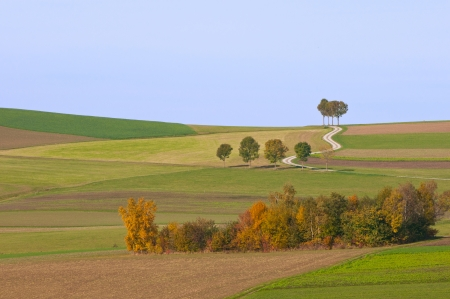 rural landscape with fields in autumn photo