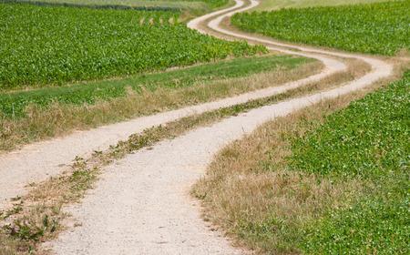 hike path through fields