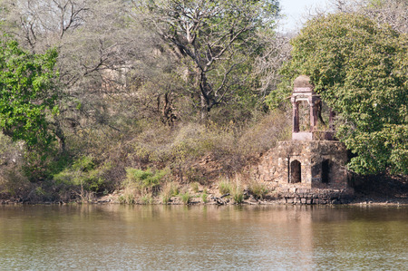 historical temple on the lake in india - national park ranthambore in rajasthan Stock Photo