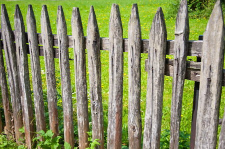laths: detail of a wooden garden fence