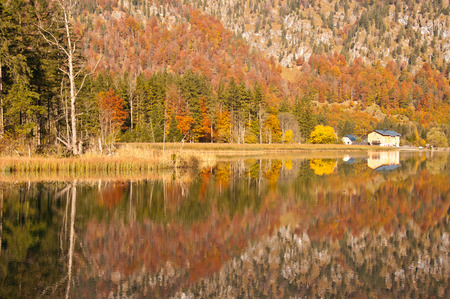colorful autumnal forest mirroring in a mountain lake Stock Photo