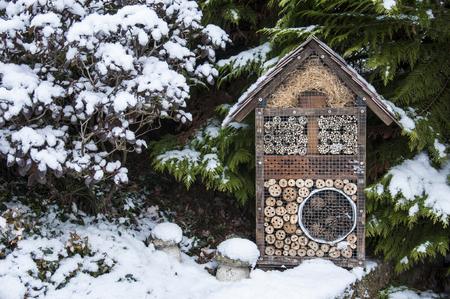 enebro: Casa de insectos en el bosque en invierno Foto de archivo