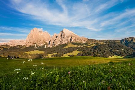 Seiser Alm in South Tyrol - Italia