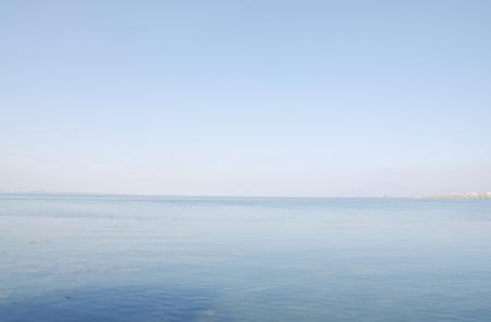 bacillus: erhai lake