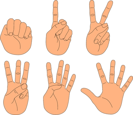 2 3: Hand with fingers in different positions: from the fist to the open palm Illustration