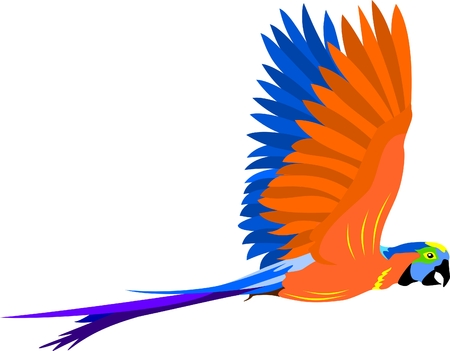Flying parrot Stock Vector - 8258821