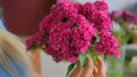 Professional woman floral artist, florist preparing flowers - pink turkish carnations for bouquet at workshop, flower shop. Floristry, handmade and small business concept