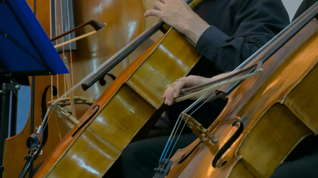 Symphony concert - unrecognizable woman and man playing cello - close up shot. Music and culture concept