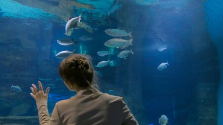 Woman stay near big aquarium tank, watching the fish. Tourism and entertaiment concept