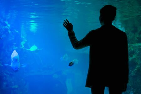 Underwater life, tourism, education, entertainment, unity with nature concept. Back view - woman silhouette looking at fish in large public aquarium tank at oceanarium with blue low light illumination