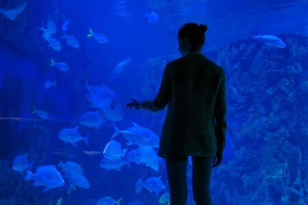 Woman silhouette looking at fish in large public panoramic aquarium tank at oceanarium. Blue low light illumination - back view. Tourism, education, underwater life and entertainment concept