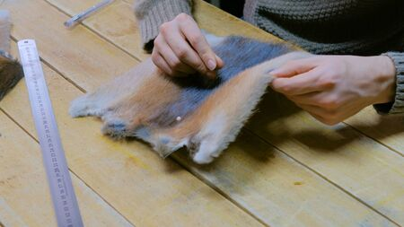 Professional male skinner, furrier working with mink fur skin at atelier, workshop. Fashion and leatherwork concept Stock fotó