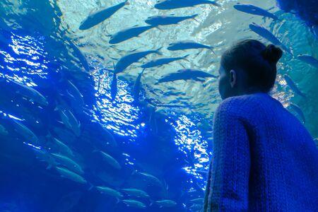 Portrait of woman looking at fish vortex in large public aquarium tank at oceanarium. Tourism, education, underwater life and entertainment concept