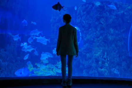 Underwater life, tourism, education and entertainment concept. Back view of woman silhouette looking at fish in large public aquarium tank at oceanarium with blue low light illumination