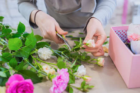 Professional floral artist, florist holding cutter and cutting flower stems in bright room of flower shop, workshop - close up view. Floristry, handmade and small business concept
