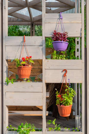Brown flowerpots with colorful flowers hanging on wooden decoration at garden, park - front view. Decoration, design, spring and botanical concept Standard-Bild