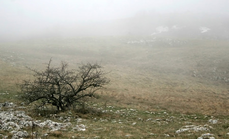 lonelyness: alone among hills