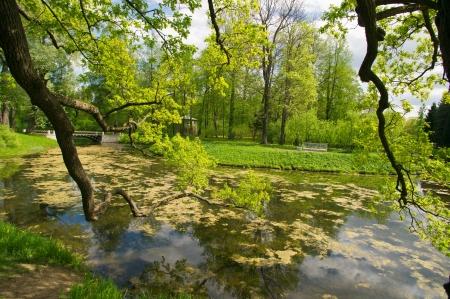 selo: Beautiful summer landscape of Catherine park  st  Petersburg