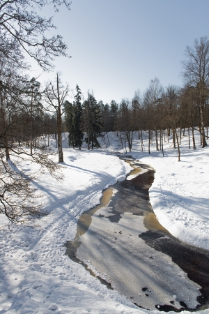 Beautiful winter park  Russia photo