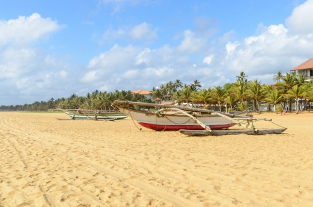 Sri Lanka. Negombo. The coastline of beautiful beaches and fishing boats