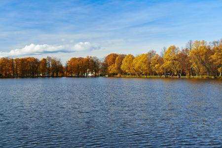 Beautiful golden autumn in the city park.